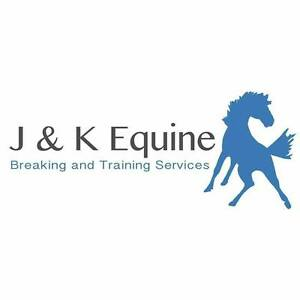 Horse Breaking & Training Services Clyde Casey Area Preview