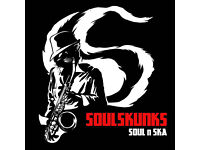DRUMMER REQUIRED: The Soulskunks Ska & Soul band