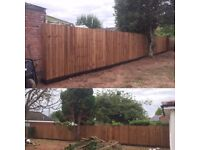 Feather Edge Fencing - Cost Effective Service