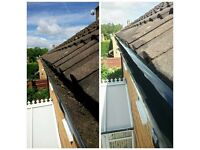 Cleaning and General Maintenance Service, (Guttering, window cleaning, painting an decorating)