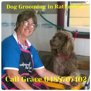 Rathmines Dog Grooming Rathmines Lake Macquarie Area Preview
