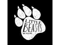 Little Beasts (Dog Walking/Home Visits) - Local, Affordable and Fully Insured.