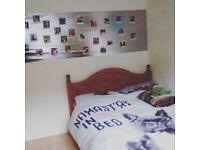 Cozy room in New Malden