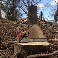 Firewood, tree, Log cutting, splitting and chainsaw work.
