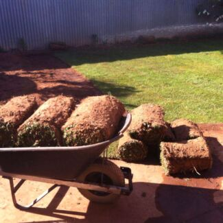 10 square meters of lawn Para Hills West Salisbury Area Preview
