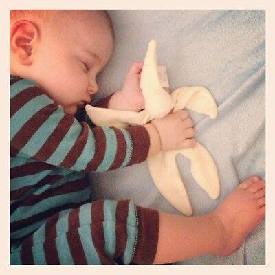 Cuski Miniboo Cream PREMI BABY COMFORTER NATURAL COMFORT BLANKET SCENT SLEEP AID