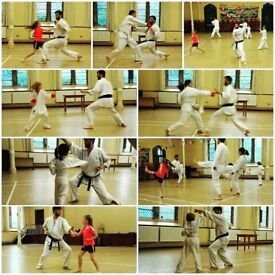 Karate Class for kids & adults