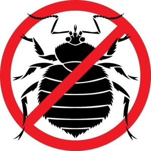 BRAND NEW Bed Bug Protectors Protect your Investment