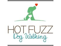Dog Walker, Cat sitter, Pet taxi available in Edinburgh