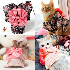 Kimono for dogs and cats