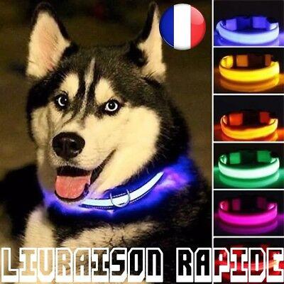 LED Halskette Hund Nachtlicht Safety Blinker Glow Pet Katze Hund Leuchtend