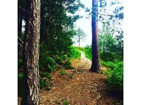 Dorset Trail Running Club