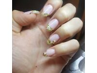 Mobile Shellac Beautician SPECIAL PRICES