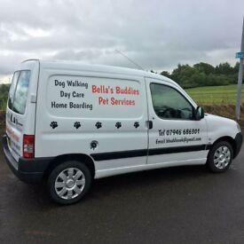 Dog walking, East Kilbride & Hamilton -Bella's Buddies