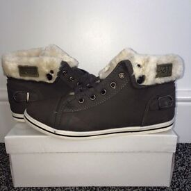 Boxed Ladies Uggs Low Tops - High Tops