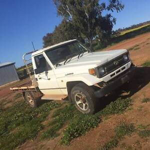 Wanted hiluxs , landcruisers , toyota vans  trucks ,any condition Rockingham Rockingham Area Preview