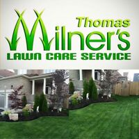 Early bird booking .Grass Cutting . Yard clean ups. Tree removal