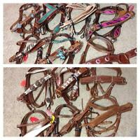 Western Bridles 3pc Sets Bling Horse Tack For Sale $139~DEAL