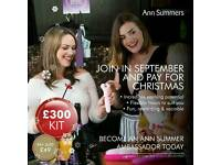 Ann summers party ambassaders