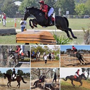 School Holiday Horse Camps/Clinics Coolamon Coolamon Area Preview