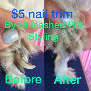 $5 nail trims proceeds go to rescues