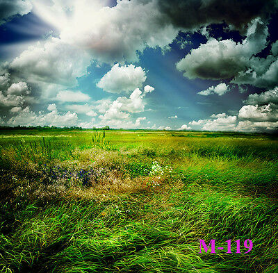 5X7FT Nature Scenic VINYL BACKDROP Photography Studio Prop Background M119