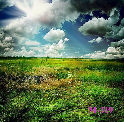 Photography Backdrop Grassland Sky 5x7FT Thin Vinyl Studio Photo Background M119