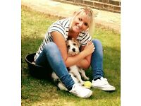Waggy Wags Fully Insured/great rates/great references (Dog Walking)