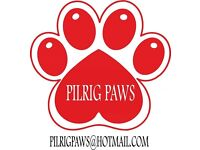 Pilrig Paws: Dog Walkers & Puppy Care based in Leith