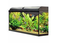 Fishtank 160 l and cabinet brand new in boxes