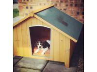 Wooden Dog Kennel - Medium - Hardly Used