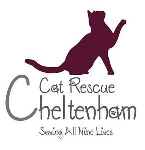 "Cheltenham Cat Rescue presents ""A Street cat Named Bob"" Elsternwick Glen Eira Area Preview"