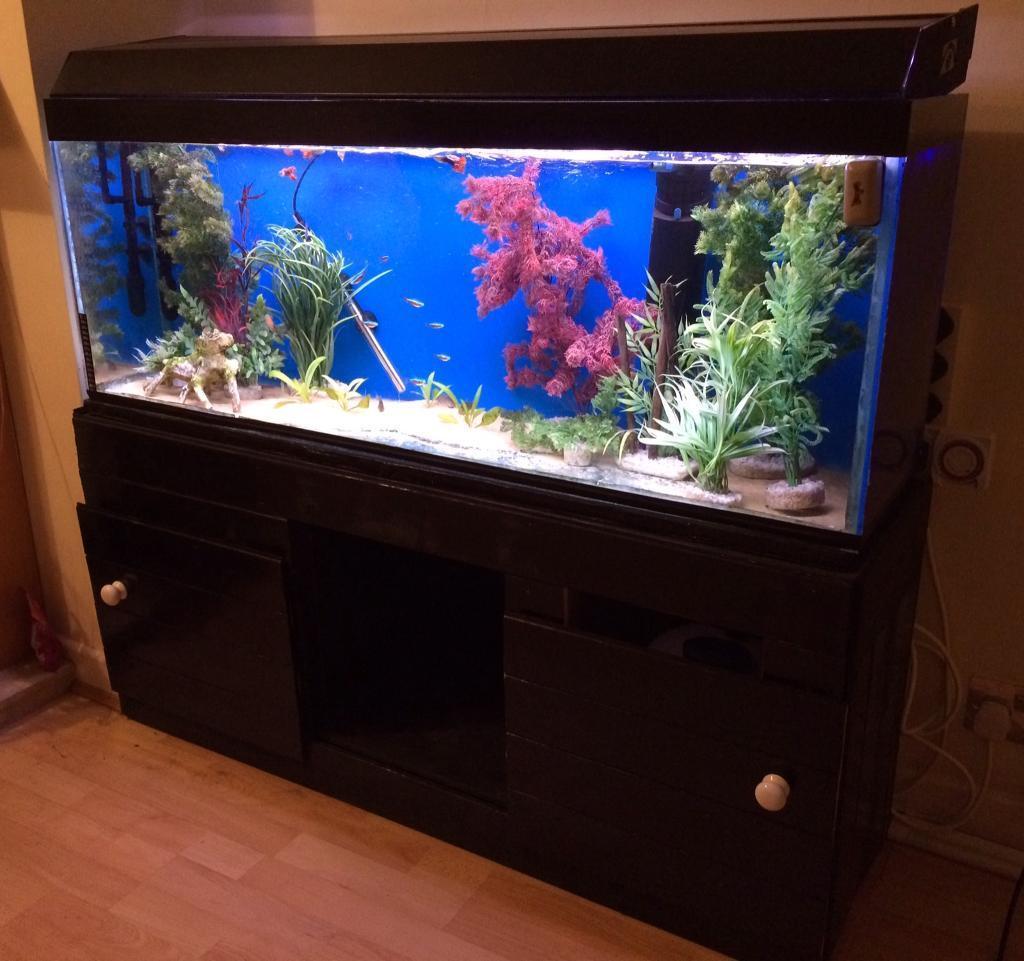 Aquarium fish tank and stand - 4ft Aquarium Fish Tank And Stand