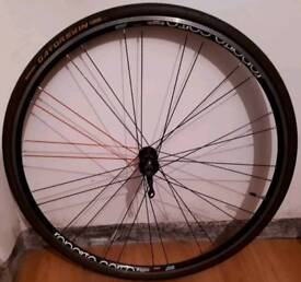 Bianchi Reparto Coarse Front Wheel 622X15c 700c WITH TIRE