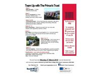 Team Up With the Prince's Trust