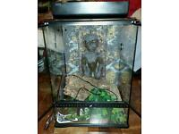 vivarium for reptiles & amphibians