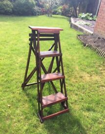 Rustic Step Ladder