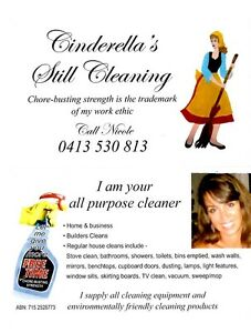 Cinderella's Still Cleaning Moffat Beach Caloundra Area Preview