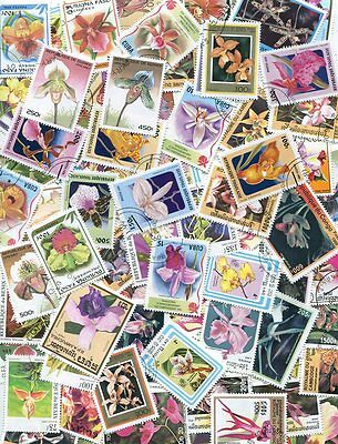 OUTSTANDING COLLECTION OF ORCHID POSTAGE STAMPS - 100 DIFFFERENT - NO DUPLICATES