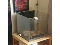 Cube Fish Tank & Full Set Up