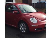 Volkswagen Beetle. Red.