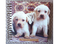 ** NEW ** 'Pawtraits' puppies greeting card book, complete with 24 cards + envelopes. £3 ovno.