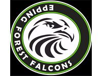 U14 Football Players 2017-18 Year 9 wanted - EPPING FOREST FALCONS FC
