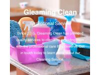 Business Cleans