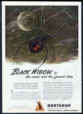1944 black widow spider scary full moon art Northrop P61 plane vintage print ad](Scary Black Widow Spider)