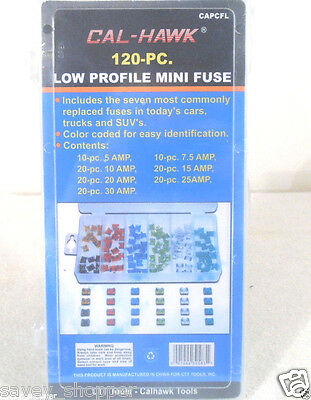 120 PC  LOW PROFILE MINI ASSORTED FUSE SET , cars , trucks , suv