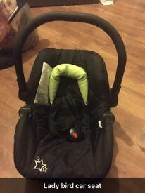 Ladybird car seat