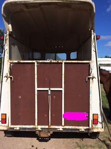 ROSWAL horse float Tewantin Noosa Area Preview