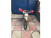 Welsh pit bike 110