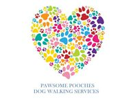 Dog Walker in/around Shirebrook area